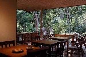 """海の近くの""""森カフェ""""で、手作りスイーツとスペシャルティコーヒーをの画像"""
