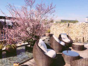 """桜の季節もあと少し!絶景シートのある""""お花見レストラン""""3選の画像"""
