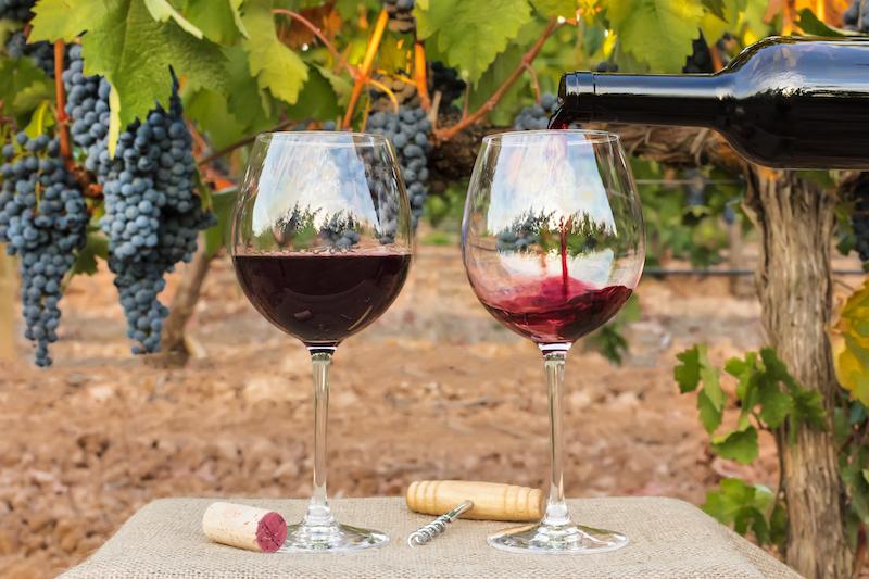 〈食べペディア 140〉自然派ワインの画像