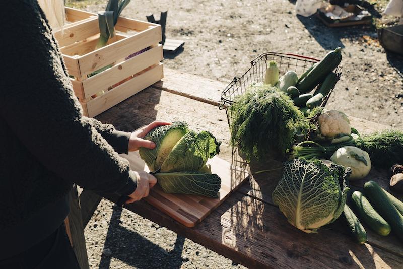 〈食べペディア 98〉地産地消の画像