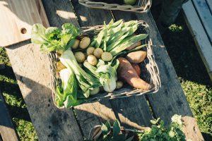 〈食べペディア 161〉ベジセントリックの画像