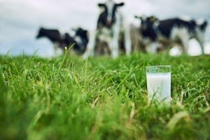 〈食べペディア 184〉農場/牧場ブランドの画像
