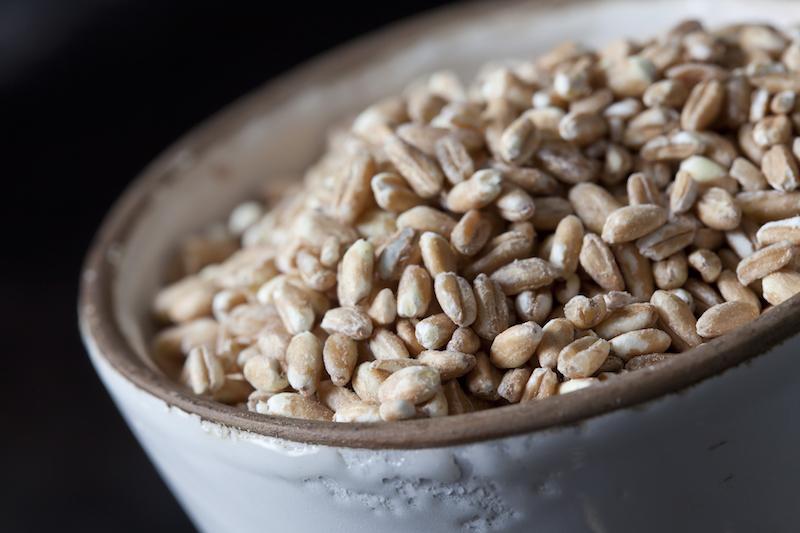 〈食べペディア 197〉古代小麦の画像