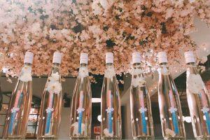 桜色の限定メニューも! 2,500本の桜の下でお花見気分を満喫の画像