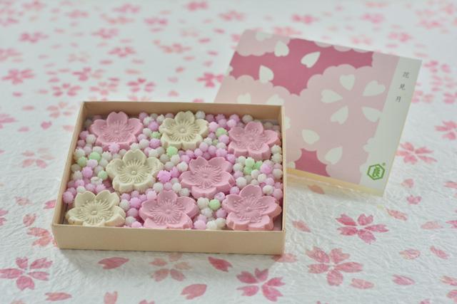 春を感じるお菓子とともに。のんびり眺められる京都の桜スポットの画像