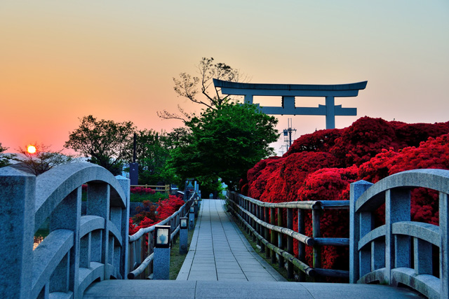 真っ赤に染まる絶景にため息。4月の京都散策は色とりどりの和菓子とともにの画像