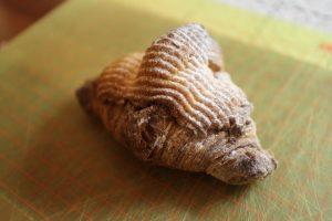 美味なる甘いクロワッサン。スイーツ専門家が注目する「菓子パン系クロワッサン」集めました!の画像