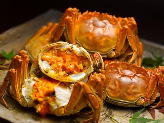 寒い季節においしくなるなる上海蟹は秋~2月頃の取り扱い。